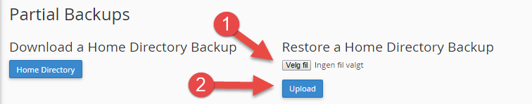 Recover from backup file in cPanel
