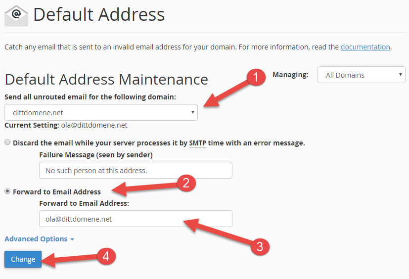 Follow the steps to set up a Default Address in cPanel